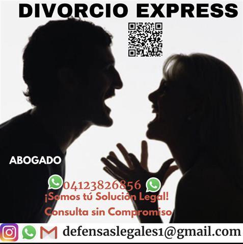 Asesor legal divorcio express image 1