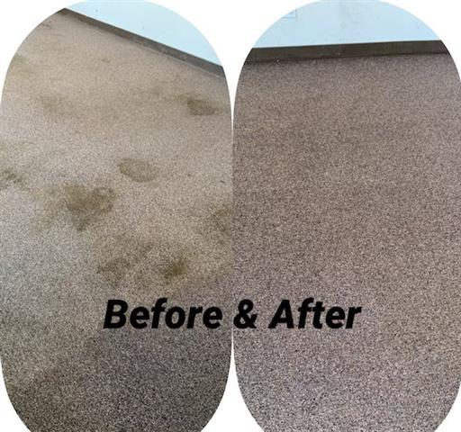 Mireles Carpet Cleaning image 3