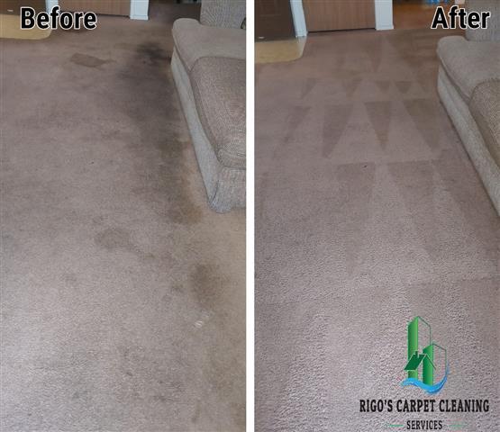 Rigo's Carpet Cleaning image 4