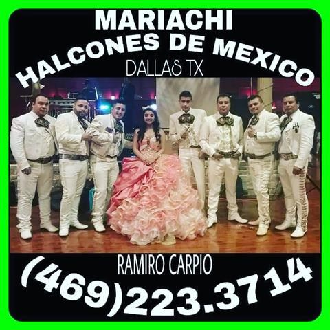 Mariachi Halcones de Mexico image 6