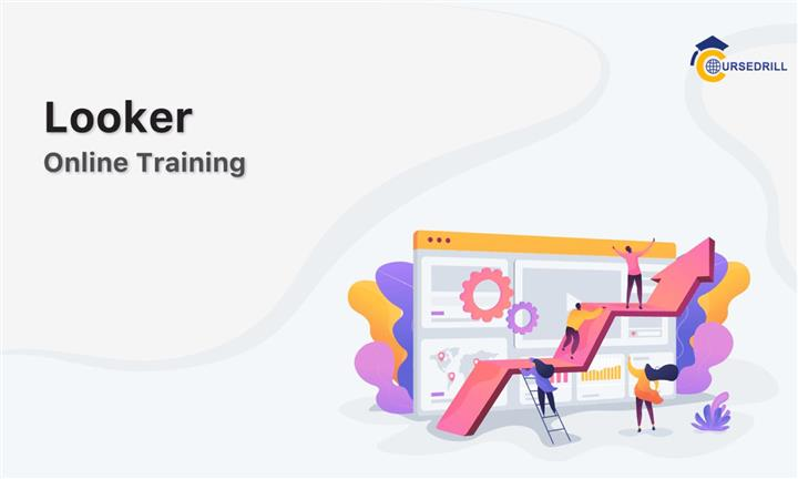 Looking for Looker Training! image 1