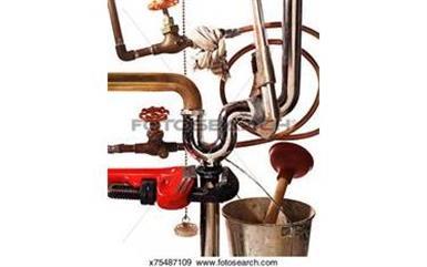 DESTUPICIONES 786-355-5348 H image 2