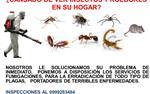 ADIOS PLAGAS - 0999283484 en Guayaquil