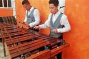 Marimba profesional 5305-4999 en Tlalnepantla
