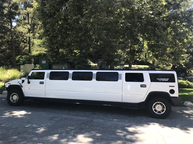 Hummer partybus $90hr domingo image 4
