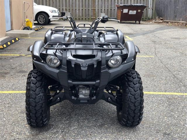 Yamaha Grizzly 2014 Special... image 4
