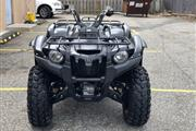 Yamaha Grizzly 2014 Special... thumbnail