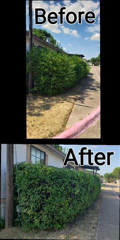 Lds Landscaping Dream Services image 3