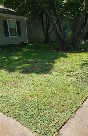 Lds Landscaping Dream Services image 5