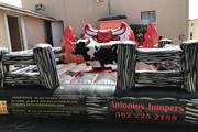 Mechanical bull toro mecánico