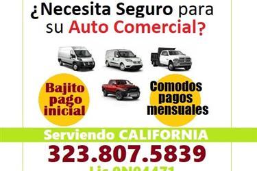 SEGURO ECONOMICO en CALIFORNIA en Los Angeles