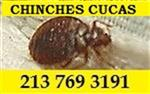 #1 Chinches Cucas Organico en Los Angeles