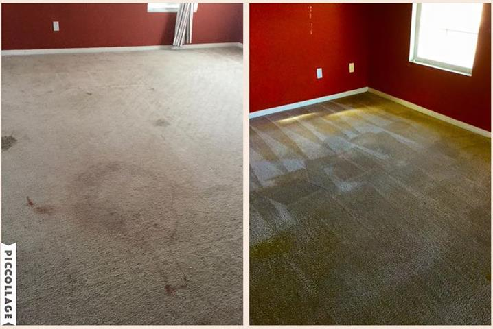 FLORES CARPET CLEANING image 2