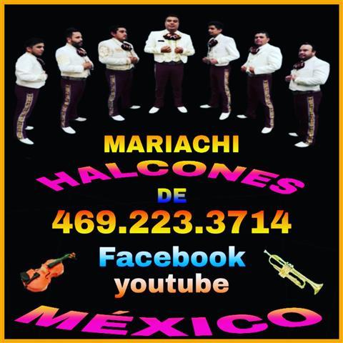 Mariachi Halcones de Mexico image 3