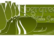 Ever Green Tree Services thumbnail 1