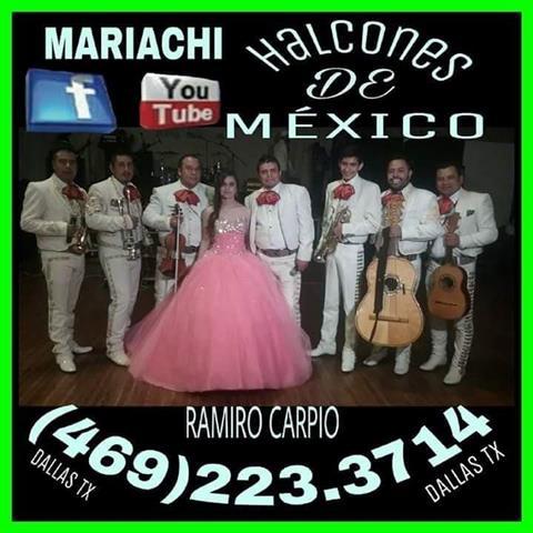 Mariachi Halcones de Mexico image 4