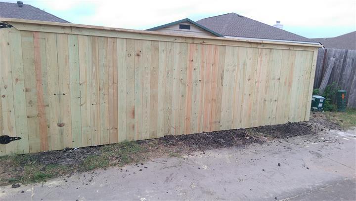 Reyes fences image 10