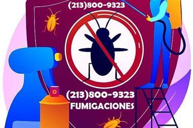 FUMIGACIONES HISPANOS L.A 24/7 en Los Angeles County