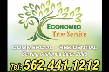 Economic Tree Service en Orange County