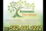 Economic Tree Service