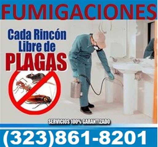FUMIGACIÓN DE CUCARACHAS . image 1