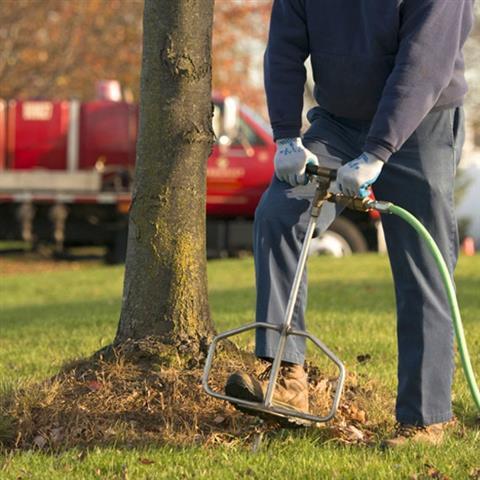 J Perez Tree Service image 7