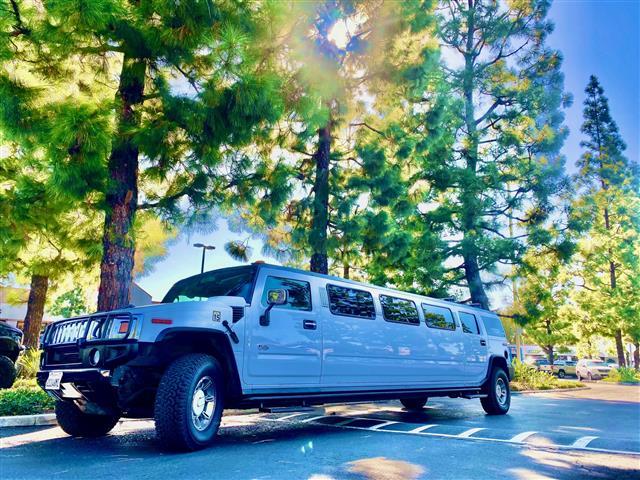 Limousine Party bus $99h si 99 image 4