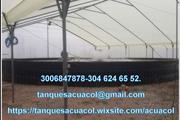 INVERNADEROS EN PLÁSTICO thumbnail
