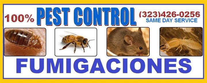 ¿TIENE PROBLEMAS DE PLAGAS? image 2