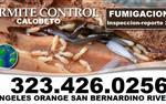 Termites Orange County 24/7 en Orange County