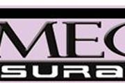 Omega Insurance Services