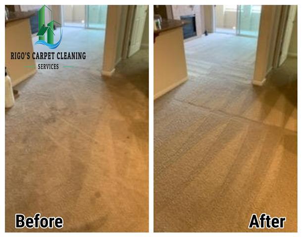 Rigo's Carpet Cleaning image 6