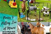 Ponies & Petting Zoo of Miami. thumbnail 1