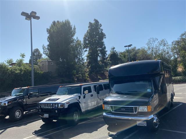 Limousine Party bus $99h si 99 image 2