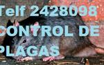 CONTROL D PLAGAS 0987058464 en Quito