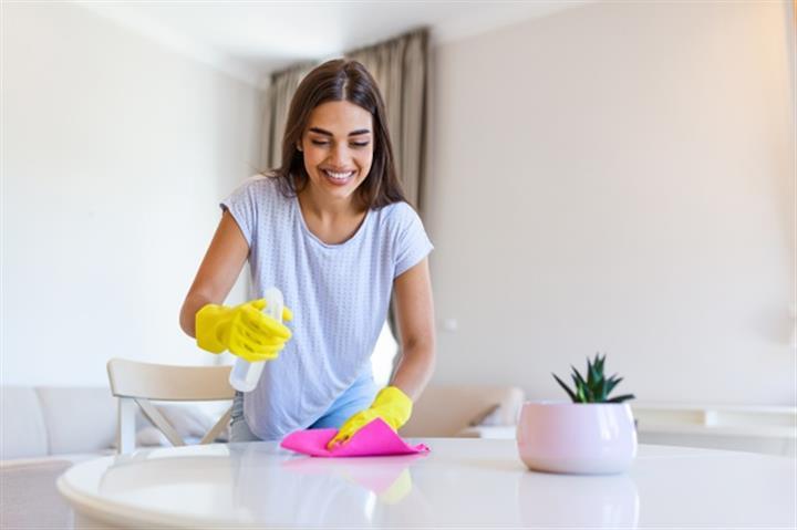 Bacante Para Limpieza De Casas image 1