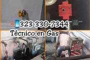 ESPECIALISTA EN GAS