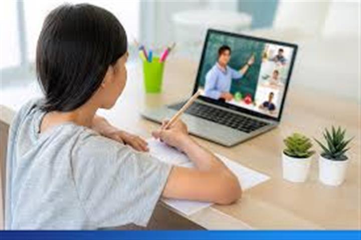 Colegio vida nueva virtual image 2
