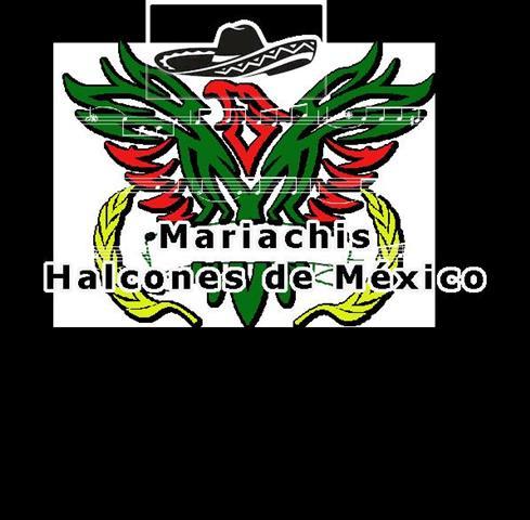 Mariachi Halcones de Mexico image 8