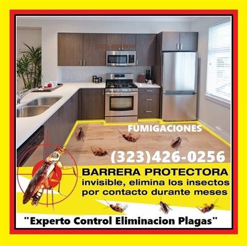 ¿TIENE PROBLEMAS DE PLAGAS? image 4
