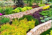 Maldonado's Gardening & Tree thumbnail 2