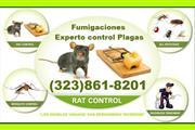 >CONTROL DE RATONES/CUCARACHAS en Los Angeles County