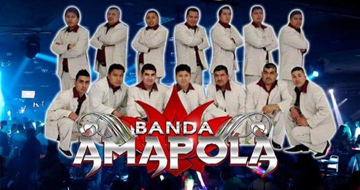 BANDA AMAPOLA 323 303 8484 image 1