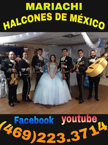 Mariachi Halcones de Mexico image 2