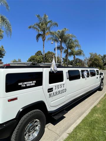 Limo Hummer & Party bus image 2