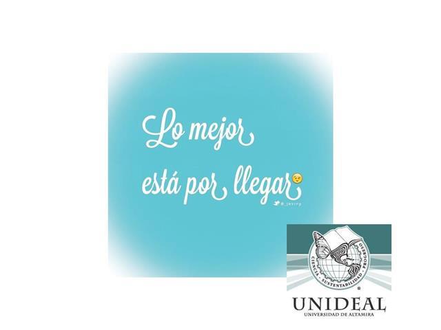UNIVERSIDAD UNIDEAL image 7