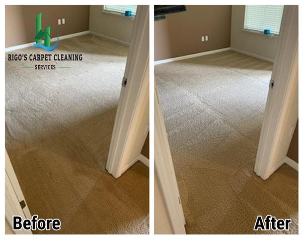 Rigo's Carpet Cleaning image 8
