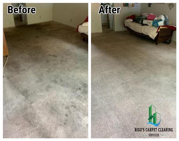 Rigo's Carpet Cleaning image 5