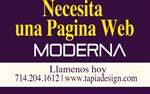 PAGINA WEB MODERNA en Los Angeles