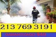 FUMIGACION Y DESINFECTADO thumbnail